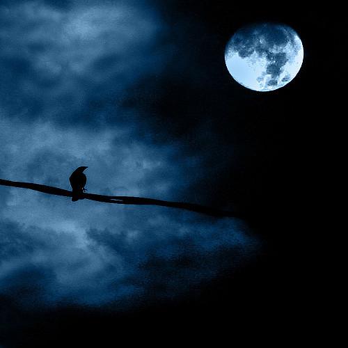 تأثير القمر
