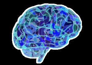 علم الأعصاب