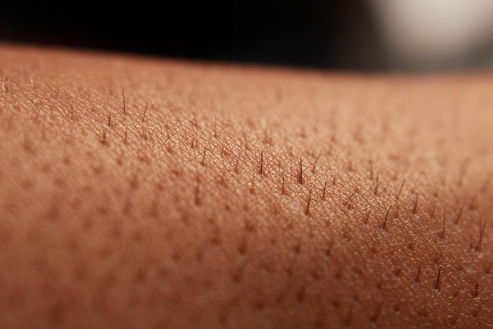 قلة الشعر على جلد الانسان