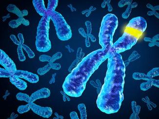جينات تنظم الاجهاد