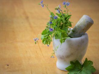 طب الاعشاب المداواة الطبيعية naturopathy