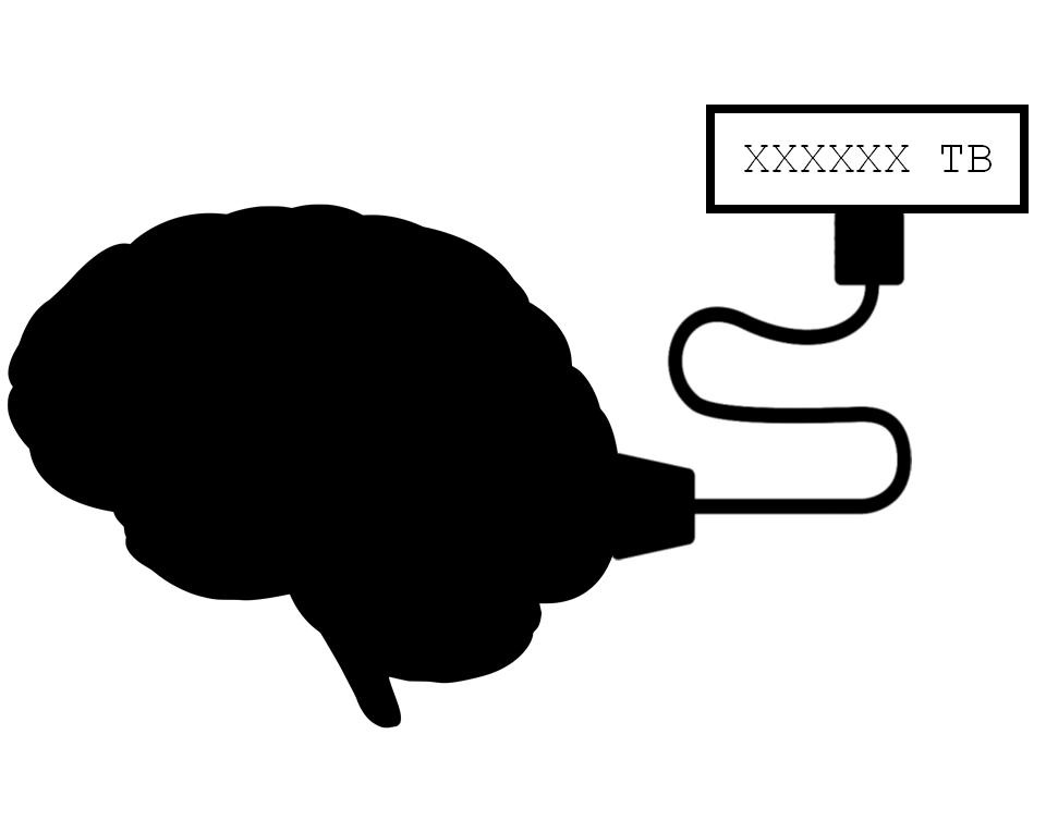 سعة ذاكرة الدماغ