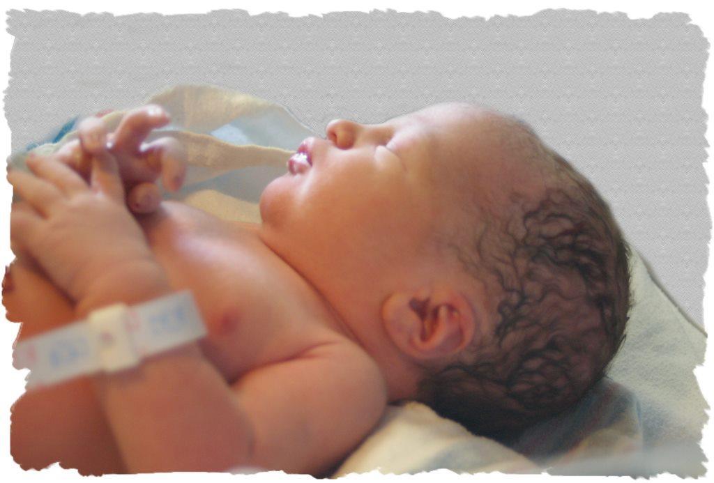 جنين حديث الولادة