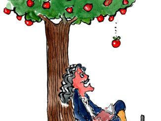 تأثير الشجرة