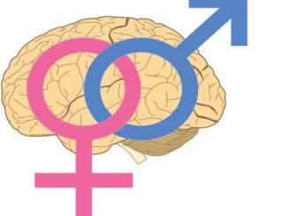 جنس الدماغ