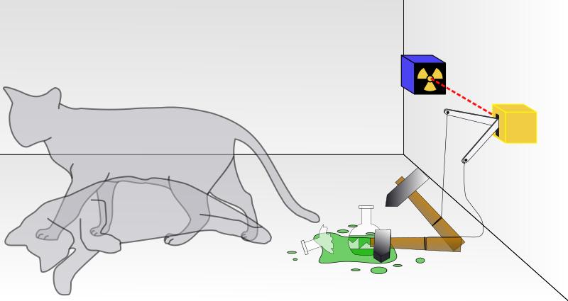 قطة شرودنجر