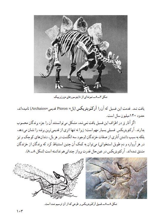 من الكتاب المنهجي لعلوم الأرض للمرحلة الاعدادية في ايران وتظهر مستحثات اركيوبتريكس في الصورة مع صورة اخرى لديناصور