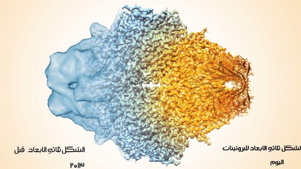 جائزة نوبل للكيمياء 2017 الشكل ثلاثي الابعاد للبروتينات