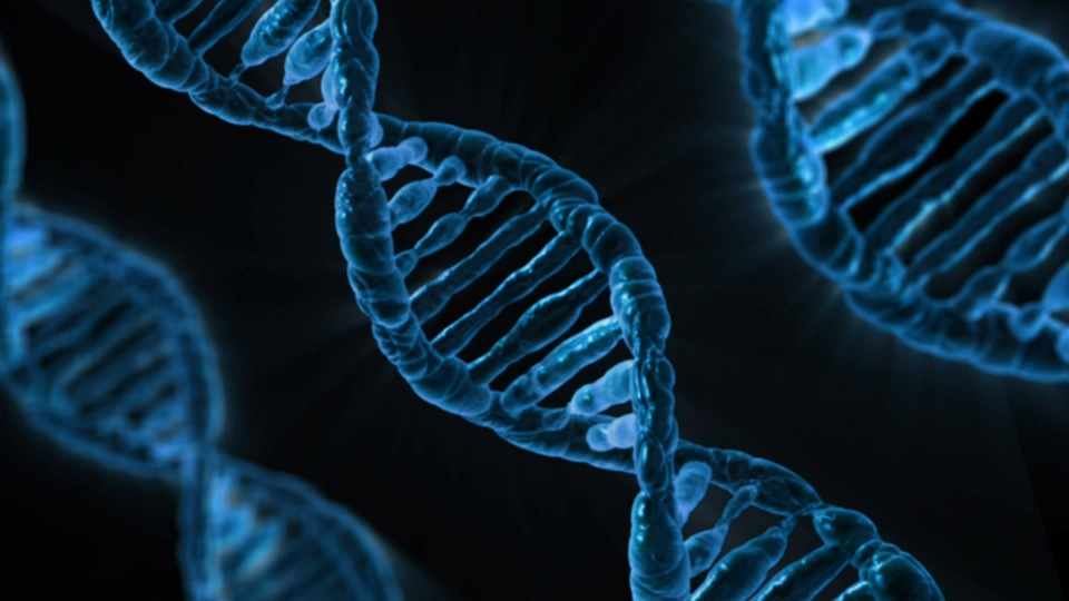 الجينات
