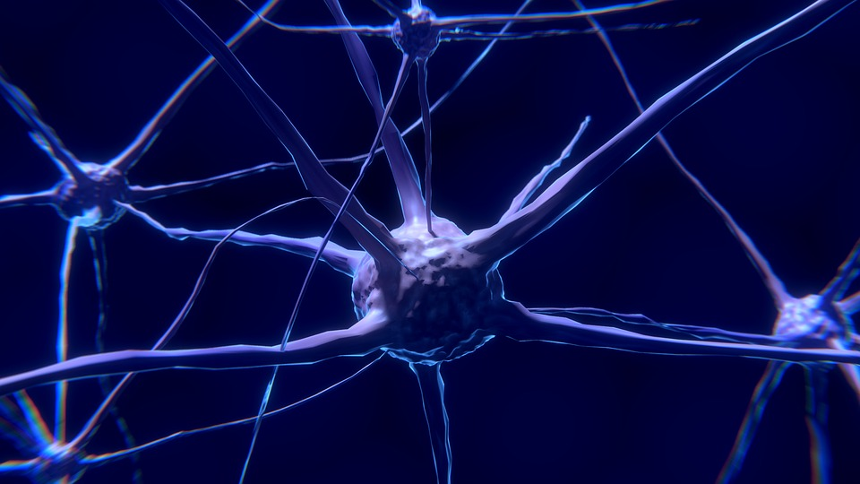 التواصل بين الخلايا