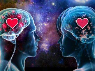 بيولوجيا الحب