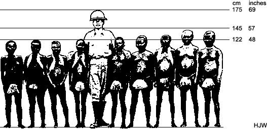 طول سكان اندامان مقارنة بمتوسط الإنسان الحالي