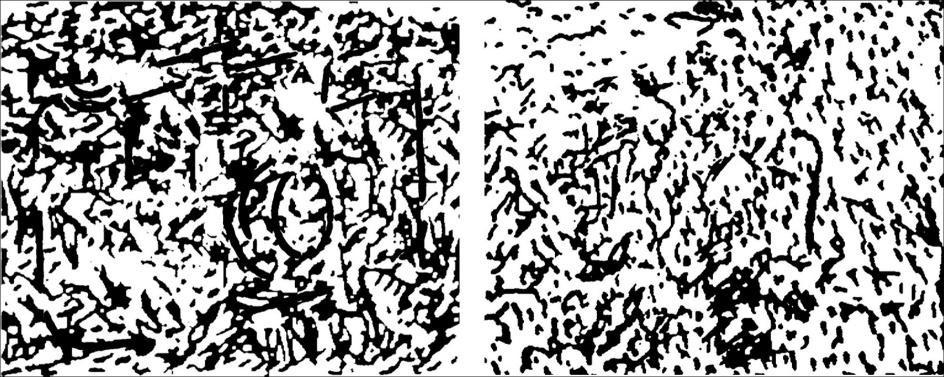 صورة لاختبار نفسي اليسار ناتجة من تعديل صورة واليمين صورة عشوائية تماما
