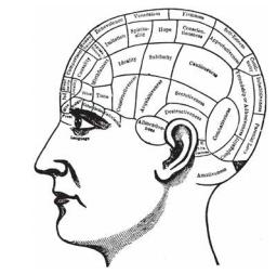 فراسة الدماغ