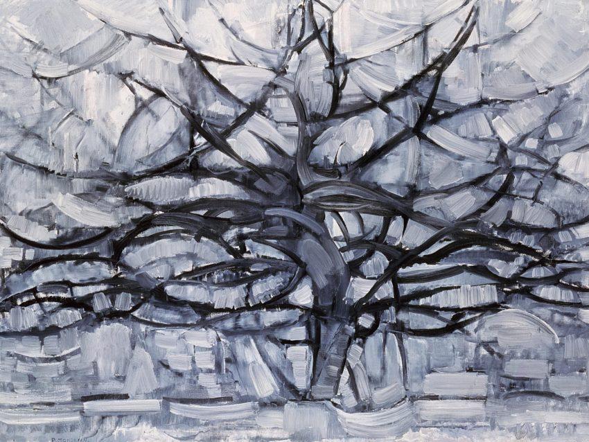 شبكة اعصاب